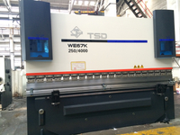 2 Axis NC Hydraulic Press Brake (WE67K-250/5000)