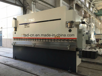 Small Electric-servo CNC Press Brake for Metal (WE67K-250/5000)